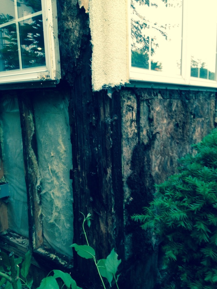 Dryvit Rotted Wood