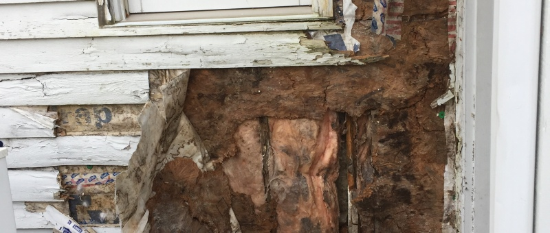 Rotten OSB and moldy insulation from water running behind siding and house wrap