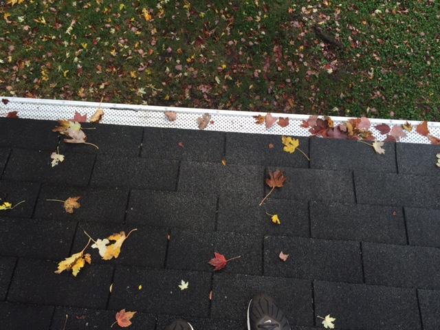 Shur Flo X Leaf Protection Carlson Exteriors Inc