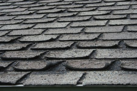 curled shingles
