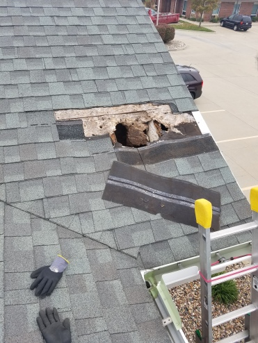 Before - Roof had a hole from a tree falling on it