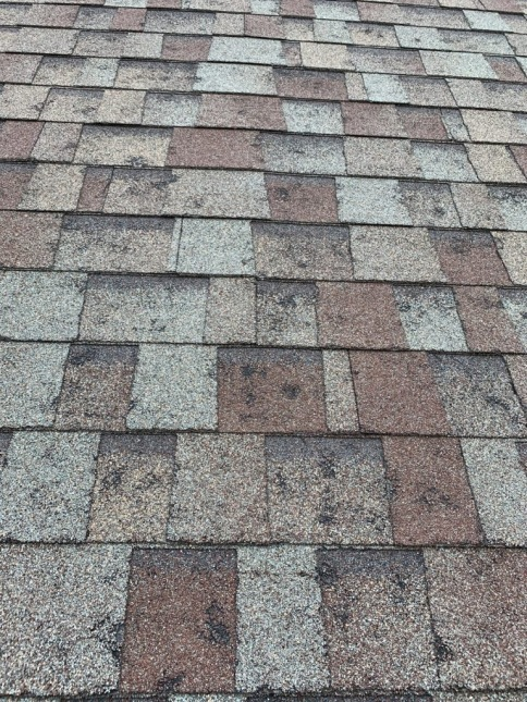 A hail damaged roof looks like pock-marked shingles